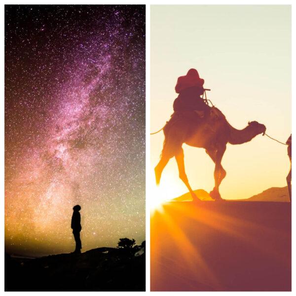 sleep stars wadi rum camel